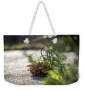 Pinecones And Wild Onions  Weekender Tote Bag