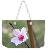 Pink And White Nectarine Blossom Weekender Tote Bag