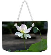 Pink And White Water Lily With Green Pod Weekender Tote Bag