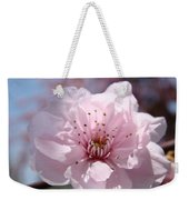 Pink Blossom Nature Art Prints 34 Tree Blossoms Spring Nature Art Weekender Tote Bag