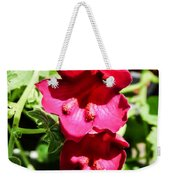 Pink Creeping Gloxinia Weekender Tote Bag