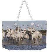 Pink Flamingoes And White Horses Weekender Tote Bag
