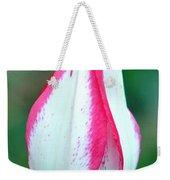 Pink Fringed Weekender Tote Bag