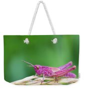 Pink Grasshopper Weekender Tote Bag