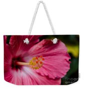Pink Hibiscus Close-up Weekender Tote Bag