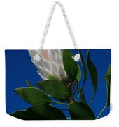 Pink King Protea Kula Maui Hawaii Weekender Tote Bag