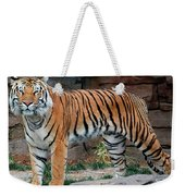 Pink Nosed Tiger Weekender Tote Bag