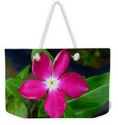 Pink Periwinkle Flower 1 Weekender Tote Bag