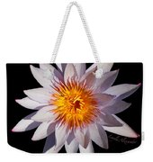 Pink Tipped Water Lily Transparent Weekender Tote Bag