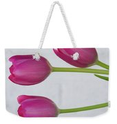 Pink Tulips And White Brick Wall Weekender Tote Bag