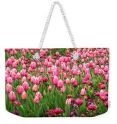 Pink Tulips At Floriade In Canberra, Australia Weekender Tote Bag