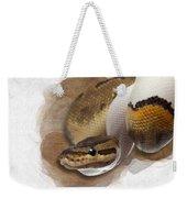Pinstripe Pied Royal Python 01 Weekender Tote Bag