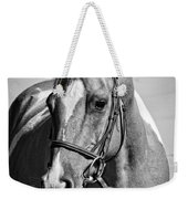 Pinto Pony Portrait Black And White Weekender Tote Bag