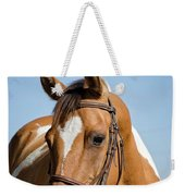 Pinto Pony Portrait Weekender Tote Bag