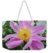 Pinwheel - Bowl Of Beauty Weekender Tote Bag