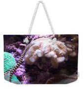Pipe Fish And Sea Anemone  Weekender Tote Bag
