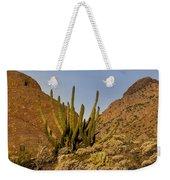 Pipe Organ Cactus At Sunrise Weekender Tote Bag