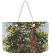 Pitch Pines, Cape Cod Weekender Tote Bag