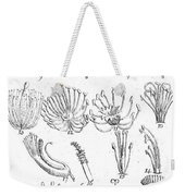 Plant Sexual Systems, Carl Linnaeus Weekender Tote Bag