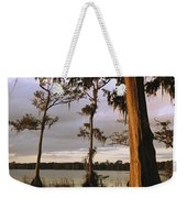 Plantation Gardens, Cypress Trees Weekender Tote Bag