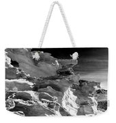 Plants And Birds And Rocks And Things Weekender Tote Bag