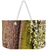 Plants And Trees Hawaii Weekender Tote Bag