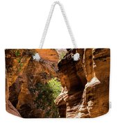 Playing The Slots In Zion Weekender Tote Bag