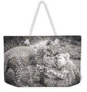 Playtime In Africa- Cheetah Cubs Acinonyx Jubatus Weekender Tote Bag
