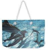 Pod Of Dolphins Weekender Tote Bag