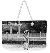 Point Clear Alabama Brown Pelican - Bw Weekender Tote Bag