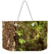 Poison Ivy Climbing Oak Tree Trunk Weekender Tote Bag