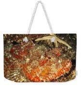 Poisonous Stone Fish, Scorpaena Mystes Weekender Tote Bag