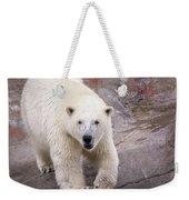 Polar Bear Prowl  Weekender Tote Bag
