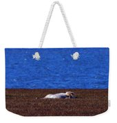 Polar Bear Rolling In Tundra Grass Weekender Tote Bag