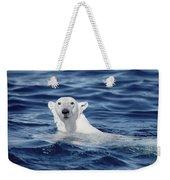 Polar Bear Swimming Baffin Island Canada Weekender Tote Bag