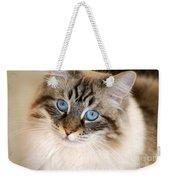 Polly Weekender Tote Bag