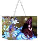 Polydamas Swallowtail Butterfly Weekender Tote Bag
