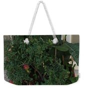 Pomegranate In The Pot Greece  Weekender Tote Bag