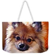 Pomeranian Contemplation Weekender Tote Bag