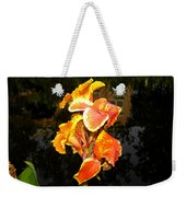 Pond Beauty Weekender Tote Bag