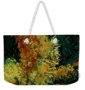 Pond In Fenffe Weekender Tote Bag