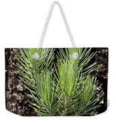 Ponderosa Pine 4 Weekender Tote Bag