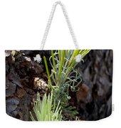 Ponderosa Pine 8 Weekender Tote Bag