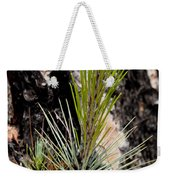 Ponderosa Pine 9 Weekender Tote Bag