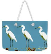 Pop Egrets Weekender Tote Bag