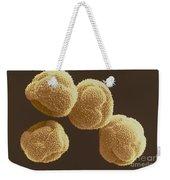 Poplar Pollen Sem Weekender Tote Bag