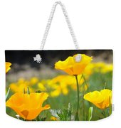 Poppy Flower Meadow 11 Poppies Art Prints Canvas Framed Weekender Tote Bag