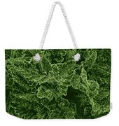 Poppy Leaves Weekender Tote Bag