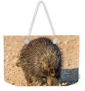 Porcupine Walking Weekender Tote Bag