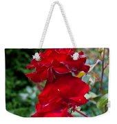 Portland Roses #6 Weekender Tote Bag
